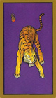 tarot-persan-carte-tigre